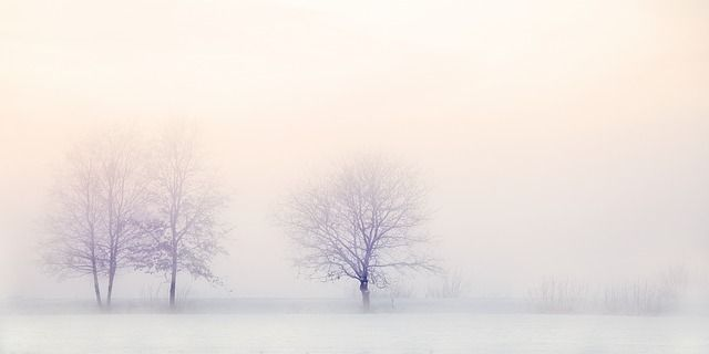 winter with foggy weather landscape