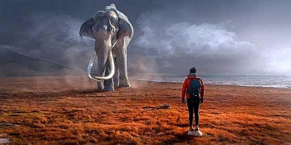 Fantasy composite image